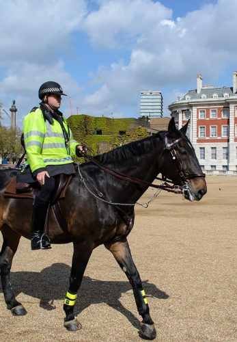 LONDON - April 20: British policeman on horseback in London on April 20 2012. The London Metropolitan Mounted Police has a capacity of 120 horses surveilling the city.